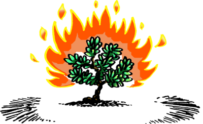 fire burning clip art � cliparts